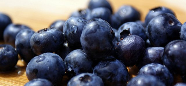 blueberries for recovery